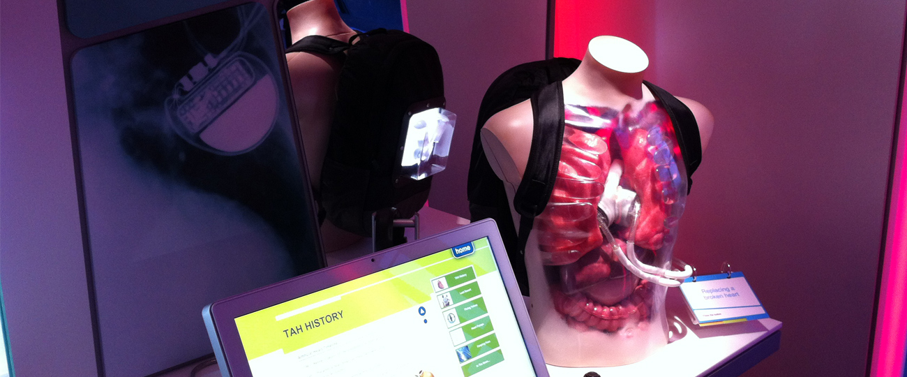Artifical Heart Display