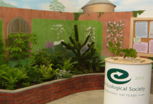 British Ecological Society At Chelsea Flower Show