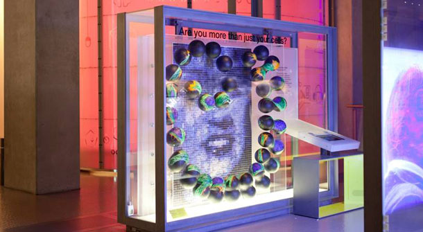 Henrietta Lacks Exhibit Open At Science Museum