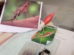Image and mosquito model Zika