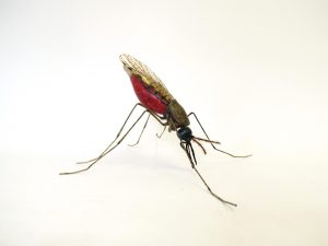 Large scale mosquito model Zika