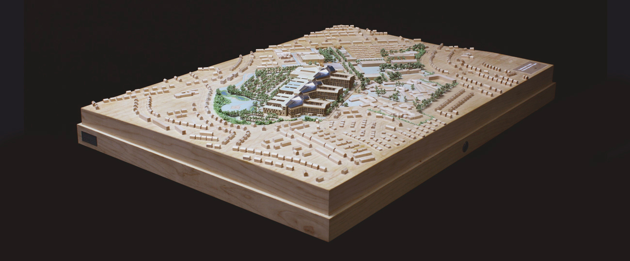 Timber planning model