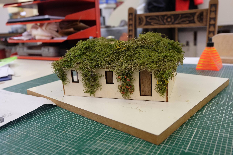 Amalgam Canopy & Stars Treehouse