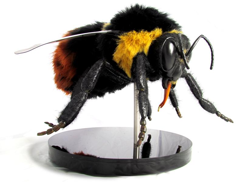 Interactive-Props-Bilberry-bee